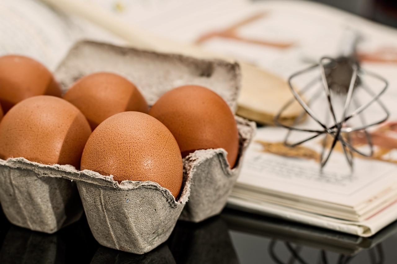 Receitas para gato com ovos cozidos