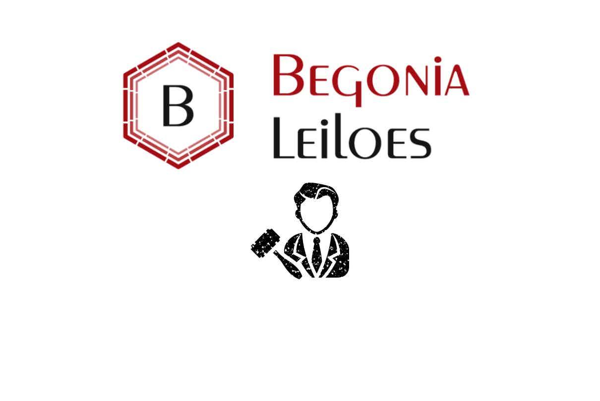 Begonia Leilões